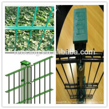 Высокое качество ячеистой сети двойной сетки / двуслойной сетки оптовой продажи горячее продавая (фабрика)