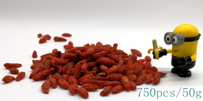 conventional goji berry Size 750pcs