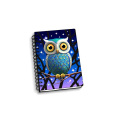 NIGHT OWL 3D NOTEBOOK-0