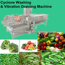 vegetable washing machine and draining machine/Salad/IQF