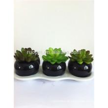 Plantas plásticas de plantas suculentas artificiales baratas 2014 con el pote de cerámica oscuro