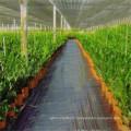 Tissu tissé d'anti-dérapant d'agriculture extérieure de couverture de film de qualité