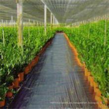 Tela tejida agricultura antideslizante de alta calidad de la cubierta de la película de la película