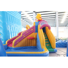 Outdoor Playground Professional inflatable water park