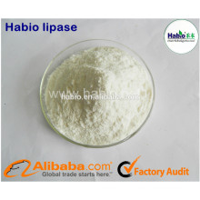 Supply Lipase Enzyme As Flour Improving Agent For Bakery