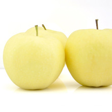 High Quanlity Frische Gold Apfel Süßer Apfel