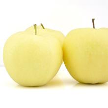 Высокое Quanlity Fresh Gold Apple Сладкое яблоко
