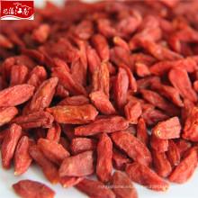Nueva Ningxia venta al por mayor orgánica natural goji berry