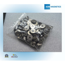 China ISO/Ts 16949 Certificated Permanent Magnet