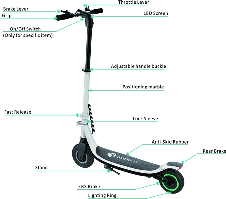 Electric Scooter Mobility