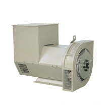 Brushless Synchronous AC Generator (JDG Series)