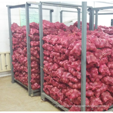 Liliaceous Vegetabless fresh red onion from factory with quick delivery