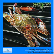 New landing IQF frozen whole crab