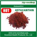 Pó natural puro da extração da astaxantina da alta qualidade