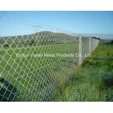 Garden Fencing, Galvanized Grassland Garden Fence, Galvanized Euro Style Wire Mesh Garden Fencing