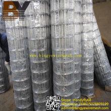 Malla de alambre soldada galvanizada en caliente