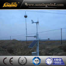 300W Mini Monitoring System Power Supply Wind Generator Good Price