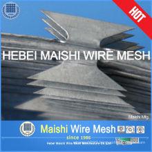 Razor Wire (fence)