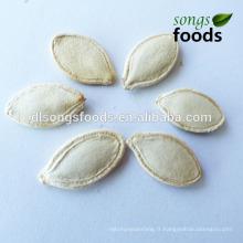 Graines de citrouille peau sèche Shine en coquille