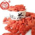 Ningxia Goji Berry Miracle Frucht Ningxia Beeren Goji Getrocknet