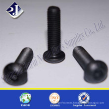 China Supplier Top Quality Popular With Germany Black Button Head Screws
