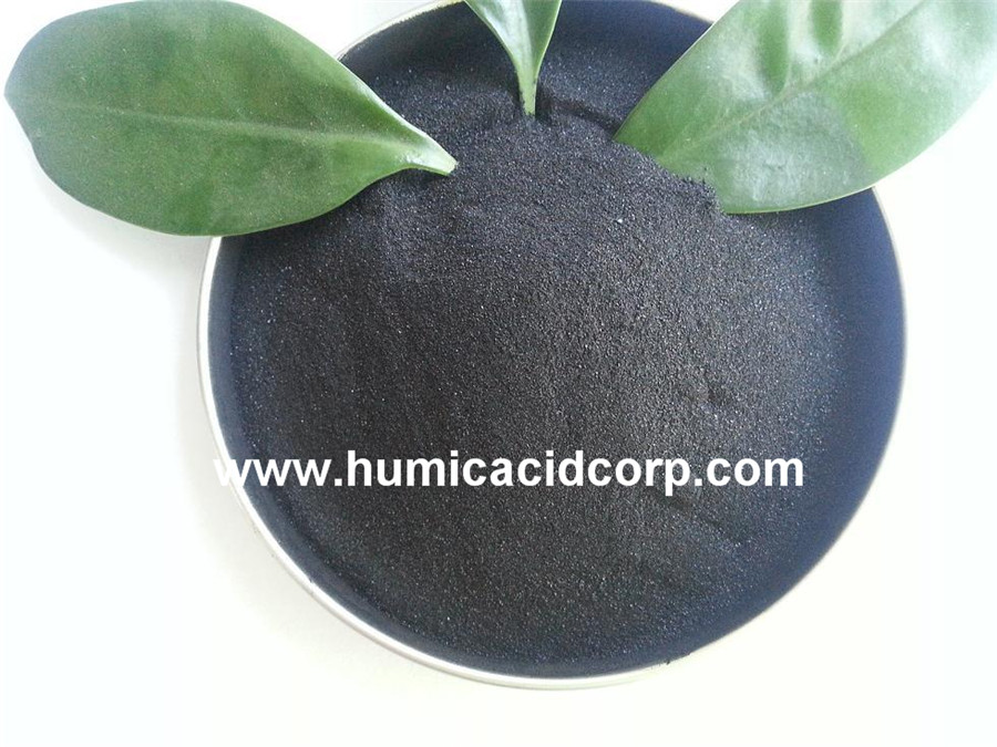 Potasium Humate Organic Fertilizer
