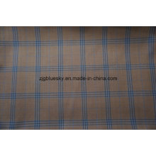 Vérifier le tissu pour le costume