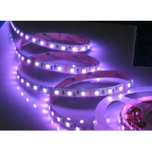 400nm Purple Violet Color flexível LED Strip