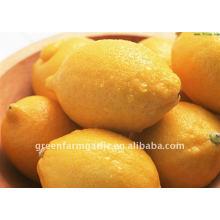 Greenfarm limón chino fresco