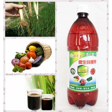 Algae Bio Preparate Bio Fertilizante para el tratamiento de la pudrición de las raíces