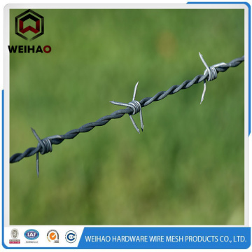 Bwg 16 Galvanized Military Barbed Wire Fence