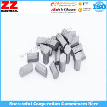 Carbide Octagonal Tips