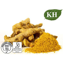 High Natural Curcuminoid 10% Turmeric Extract