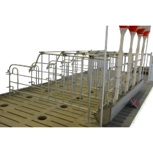 Customized size gestation crate for pig equipment