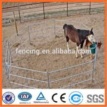 Barrière de chevaux à vendre à vendre en Australie / Manufacture of China