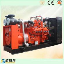 Unité de production de gaz méthanique de méthane de Chine pour Domsetic Electric Power