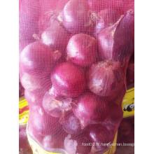 Importateurs d'oignons frais dans le marché de Columbia