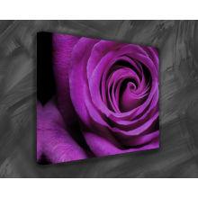 Pintura de la lona de Rose de la alta calidad en lona