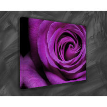 High Quality Rose Canvas Painting on Canvas