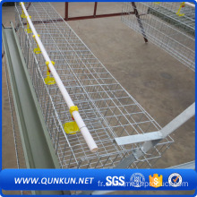 Poultry Farm Broile Layer Chicken Cage