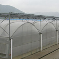 Large Plactic Greenhouse For Vegetable Flowers