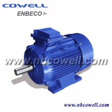 Widely Used Industrial Type Electric Motor
