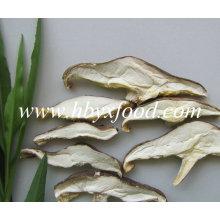 Fatia secada do cogumelo de Matsutake para a venda