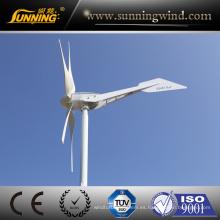 Generador de turbina de viento del precio de fábrica de la buena calidad 1200W