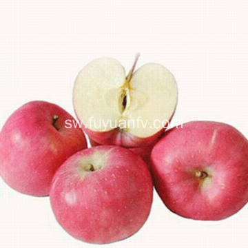 Export New Quality Mazao Bora Competitive Fuji apple