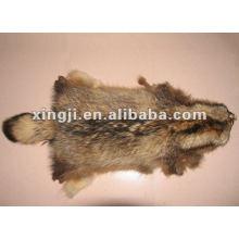 piel de piel de mapache crudo