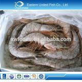 china seafood new season raw shrimp