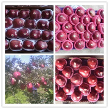 Red Delicious Apple / Fresh Huaniu Apple