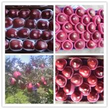 Красный вкусный Apple / свежий Huaniu Apple