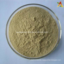 40% 70% Sapindus Extract Natural Saponin